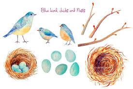 bird nest with eggs clipart. Simple Bird Bird Nest With Eggs Empty Corner Croft  Clipart In Bird Nest With Eggs Clipart D