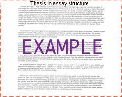thesis in essay structure coursework help thesis in essay structure