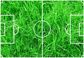 green grass soccer field. Soccer Field With White Lines On Green Grass Background, Stock Photo