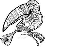 Mandala Da Colorare Il Tucano Disegni Mammafelice