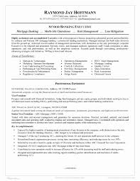 Credit And Collections Manager Resume It Asset Management Resume
