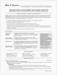 Good Looking Resumes Beauteous Good Looking Resume Lovely Example Job Resume Resume Template