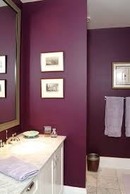 What Color To Paint A Bathroom Plum Colored Bathrooms - Bathrooms that are  painted a neutral