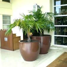 large indoor planters indoor ceramic plant pots indoor large plant pot large planters pots extra large outdoor planters for large indoor plant stands large