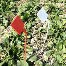 garden labels. Garden Labels Plastic T Type Upturned Plant Tags Marker Nursery Stick Ornaments Herb