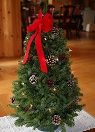 543 best Christmas trees images on Pinterest | Christmas time, Xmas trees  and Christmas crafts