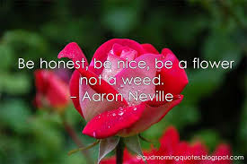 Flower Quotes Interesting Be Honest Be Nice Be A Flower Not A Weed Aaron Neville Good