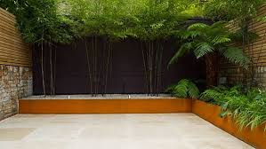 Small Picture John Davies designed contemporary garden with Black Bamboo and