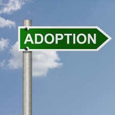 Image result for Adoption