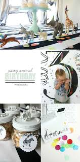 Crazy Wonderful: samuel's 3rd birthday party, party animal birthday, animal  theme, plastic