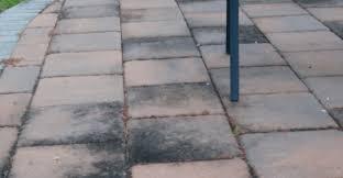 remove mold on concrete patio