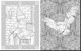 Small Picture great adult harry potter coloring book with harry potter coloring