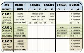 Canadian Beef Grading Chart Bison Meat Chart Information On Grading And Labelling