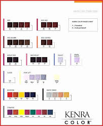 16 Interpretive Redken Hair Toner Color Chart
