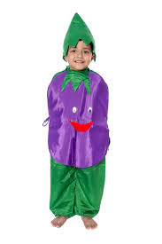 Brinjal Kids Fancy Dress Costume