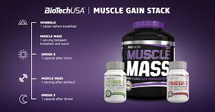 all about muscle gainers biotechusa
