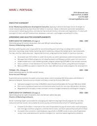 Resume Summary Example Functional Resume Summary Example Resume
