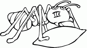 Small Picture Coloring Pages Allegheny Mound Ant Coloring Page Free Printable