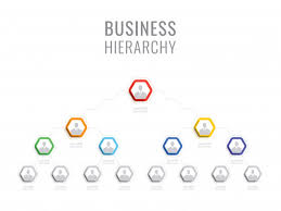 Organizational Structure Of The Company Business Hierarchy