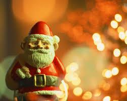 クリスマスハーバリウム花材