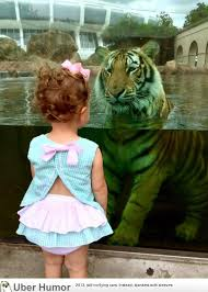 Tiger Quotes 61 Amazing My Daughter In A Staring Contest With LSU's Mike The Tiger Funny