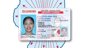 Changing; Are Barbara You To Wheeler Know Representative Driver's Illinois What Need Licenses State