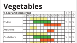When To Plant Vegetables Chart Permaculture Kitchen Gardens