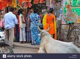 Bharatpur Red Light Area Bharatpur Street Stock Photos Bharatpur Street Stock