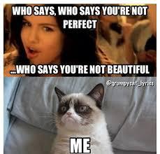 Grumpy cat vs Selena Gomez | Grumpy Cat | Pinterest | Grumpy Cat ... via Relatably.com