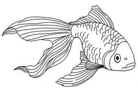 Free Fish Coloring Pages Best Of Printable Fish Coloring Pages New