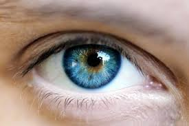 Different Shades Of Blue Eyes Chart Blue Green Eyes Learn About This Rare Color Guy Counseling