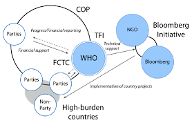 Governance Structure Of The World Health Organizations Who