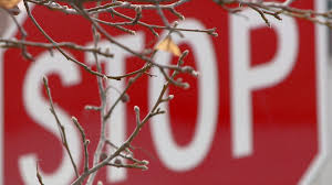 Colorado car insurance rates increasing 15 percent or more | FOX31 ...