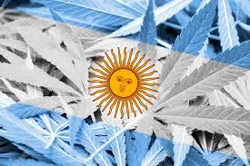 Resultado de imagen para intentan llevar 4.000 kilos de marihuana a la Argentina