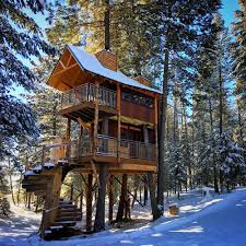tree house pictures. Luxury Montana Treehouse Retreat Tree House Pictures