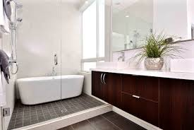 Amazing Bathroom Design Interesting Decorating