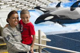 Planning Guide Vacation Planning Orlando Seaworld Seaworld Guide Vacation Orlando z7Ptpwq