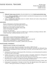 Example Of A Profile For A Resumes Profile In A Resume Srhnf Info
