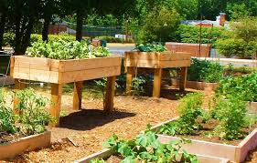 Small Picture Raised Garden Bed Design Markcastroco