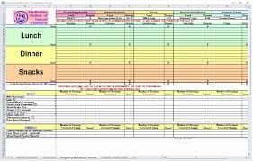 Food Diary Template Excel Fresh Pregnancy Diet Planner Zone