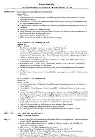 Business Objects Resume Business Objects Developer Resume Samples Velvet Jobs 27