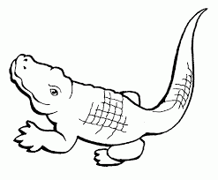 Small Picture Free Printable Crocodile Coloring Pages For Kids Coloring Book