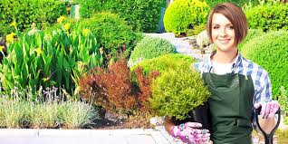 tips for residential landscaping save