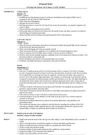 Pilot Resume Sample Pilot Resume Samples Velvet Jobs 2