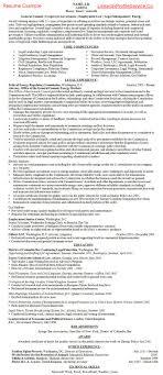Custom University Essay Writers Website For College Child