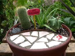 Small Picture Miniature Gardening 103 The Water The Mini Garden Guru From