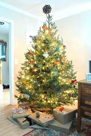 Designer Christmas Decorations Impressive Designer Christmas Decorations Decorations Elegant Tree Decorating