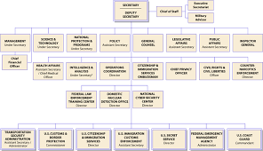 Organizational Chart Showing The Chain Of Command Among The