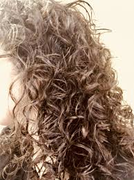 devacurl which curly hair cut and style method is best bellatory