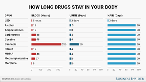 How Long Do Drugs Stay In Your System Chart News You Can Use From Phils Stock World Phils Stock World